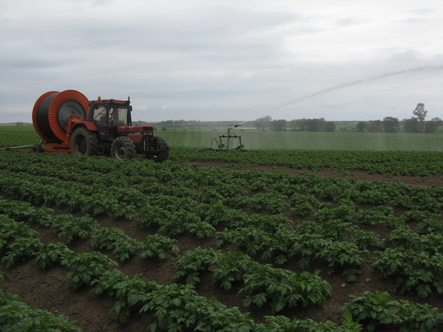 potatoes_irrigation5.jpg