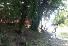 Укрепване против повърхностна ерозия - х-л Гергана, КК Аблена
