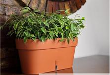 Саксия с поливна система Santino Latina Window Box