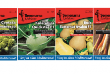 Семена за зеленчуци Mediteran серия